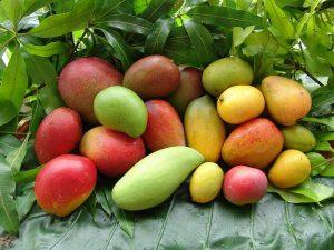 meilleur fruit pour femme enceinte